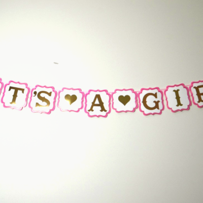It's a Girl Party Banner